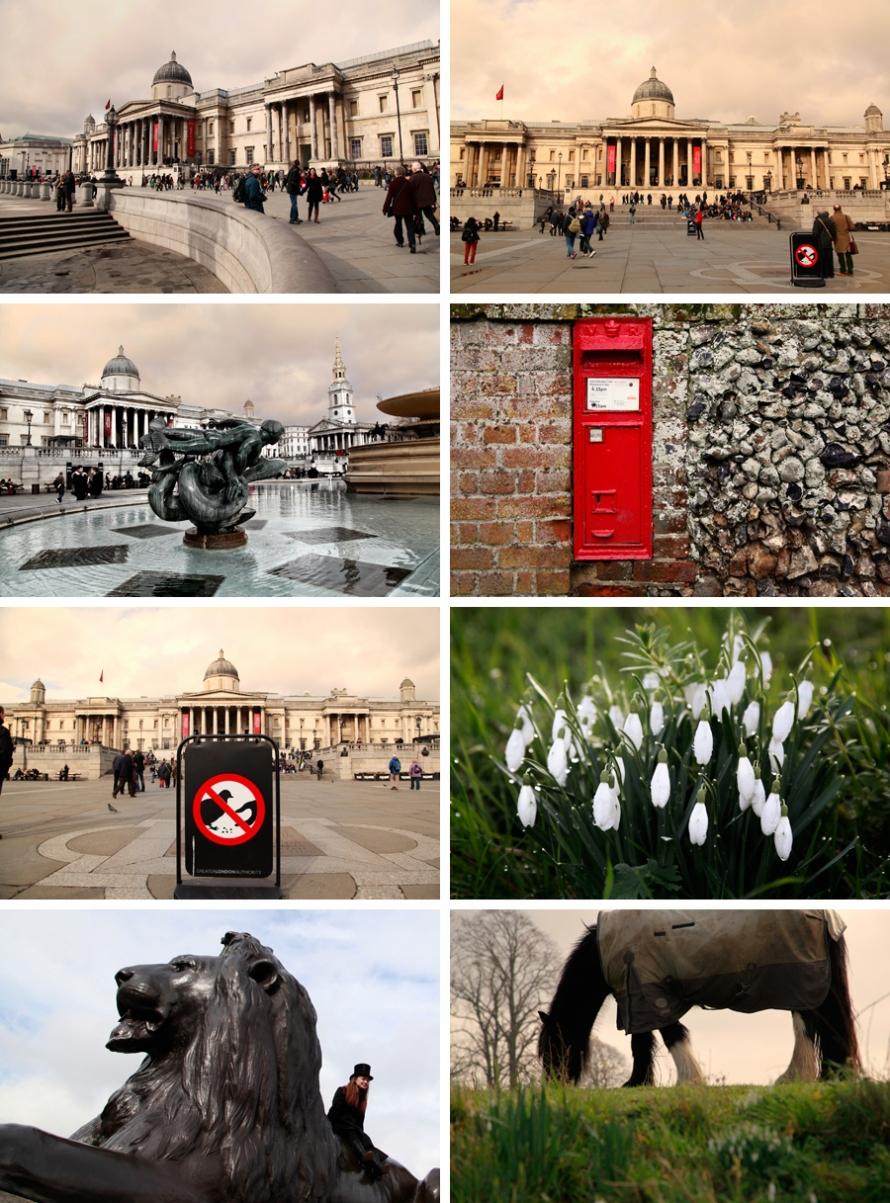 London travels_2014_Abigail_Harman-photographer
